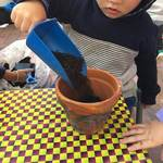 Children participate in sustainable experinces such as digging soil and planting herbs and vegetables. this promotes respect for the enviroment and connects to the EYLF Learning Outcome 2: Children are connected with and contribute to their world.